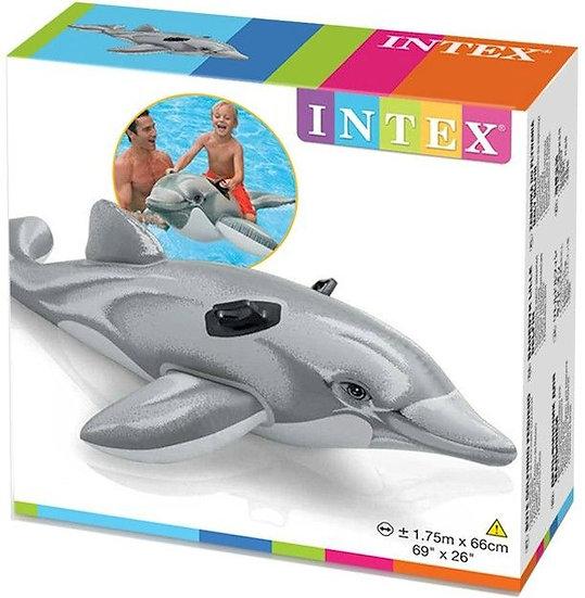 INTEX Dolphin