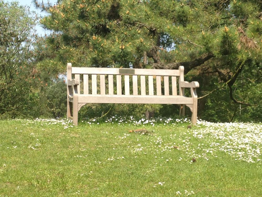 The Empty Bench