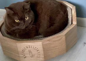 Kattenmand Siem (nieuwe versie).mov
