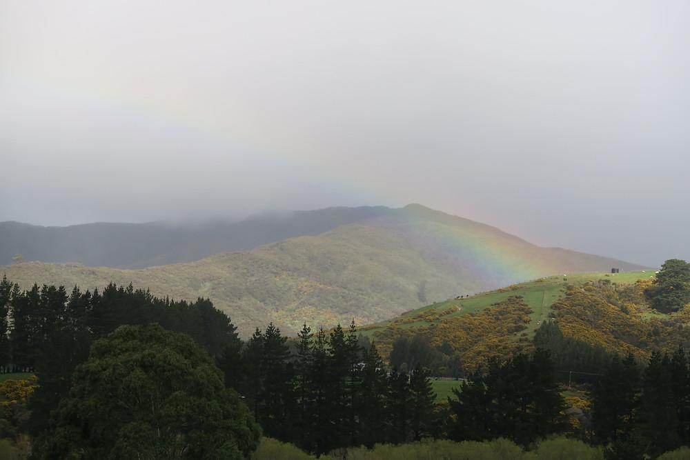 Kaitoke National Park