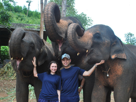 The day we became elephant mahouts