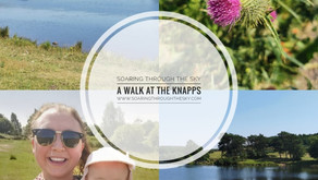 A Walk At The Knapps