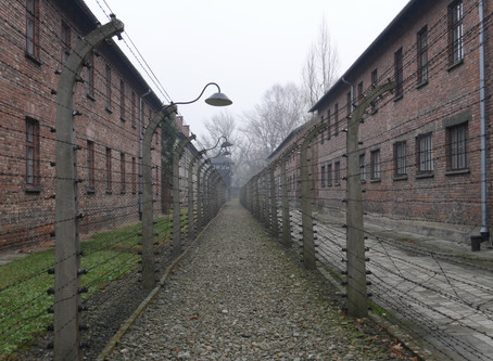 Krakow and Auschwitz