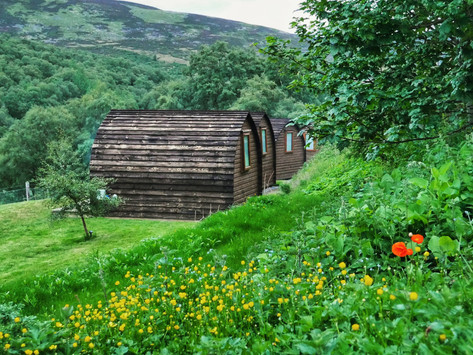 Cairngorms   Wooden Pod Glamping