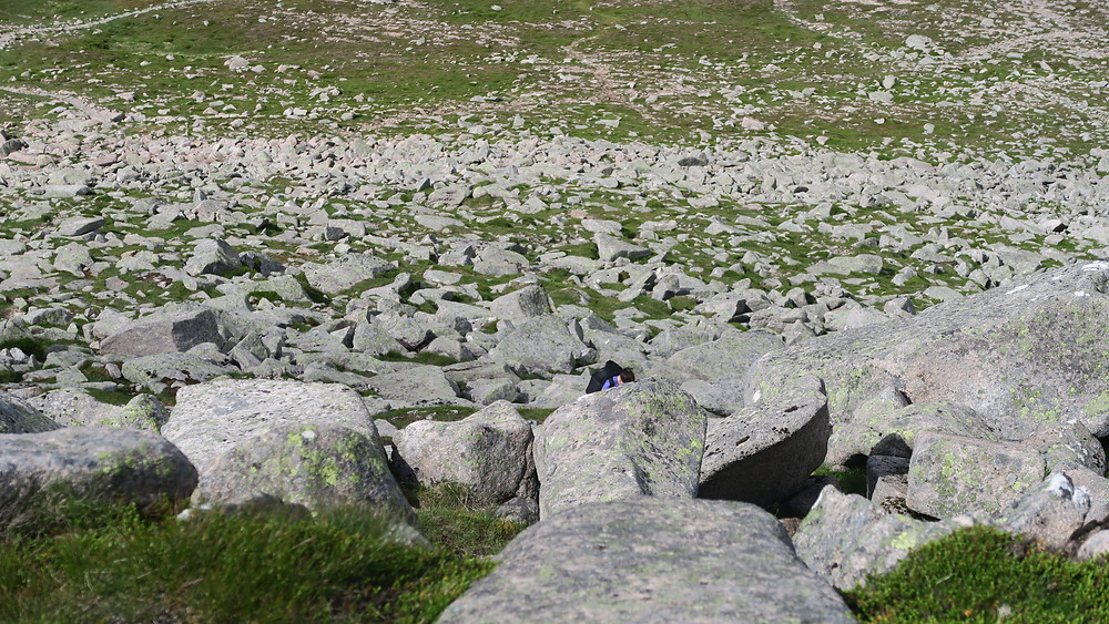 Spot Pam climbing up the boulders