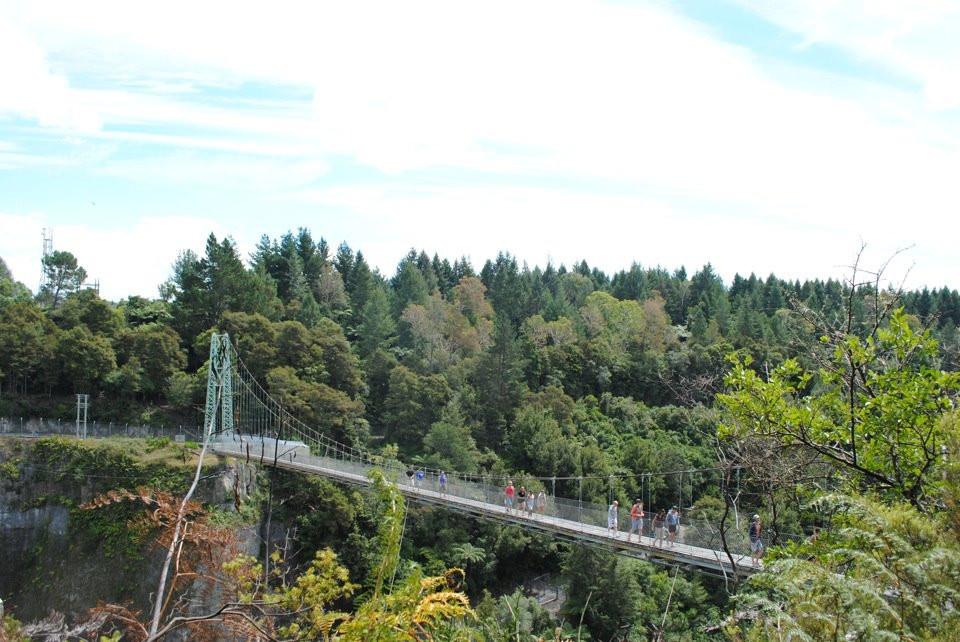 Mangapohue Natural Bridge