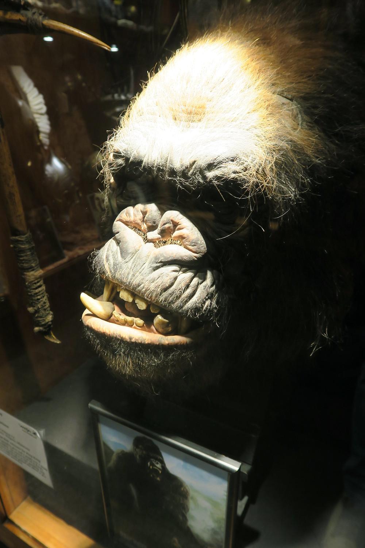 Weta- King Kong