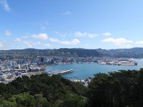 Wellington | 9 Cool Things To Do In The Cool Little Capital