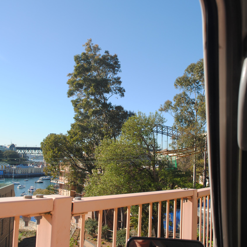 view from our van when wakening up