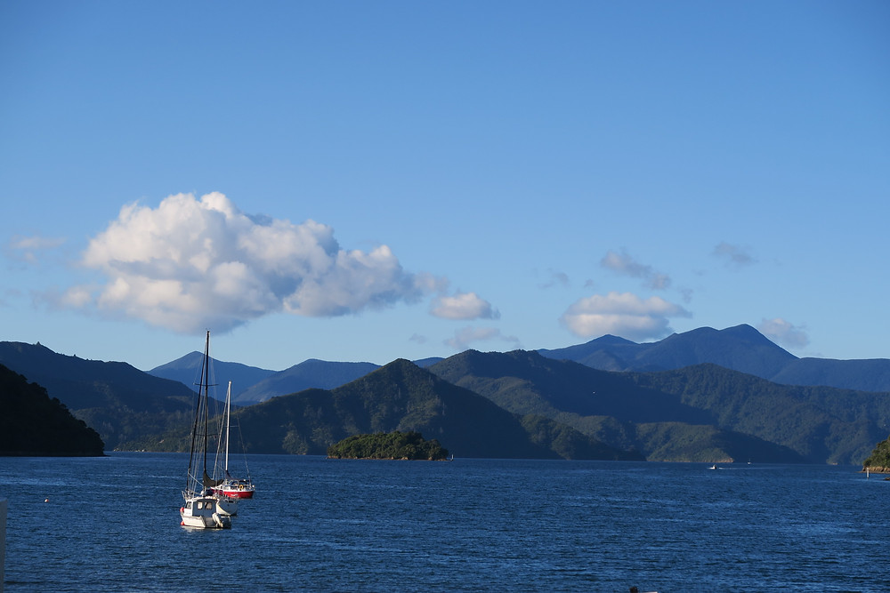 Picton and Charlotte Sounds