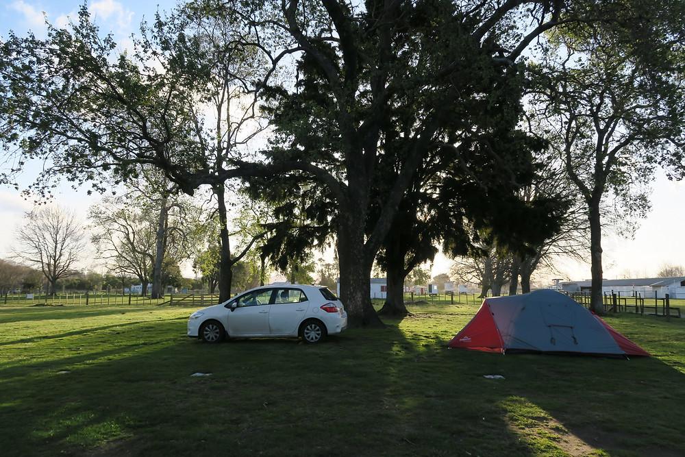 Gisborne campsite