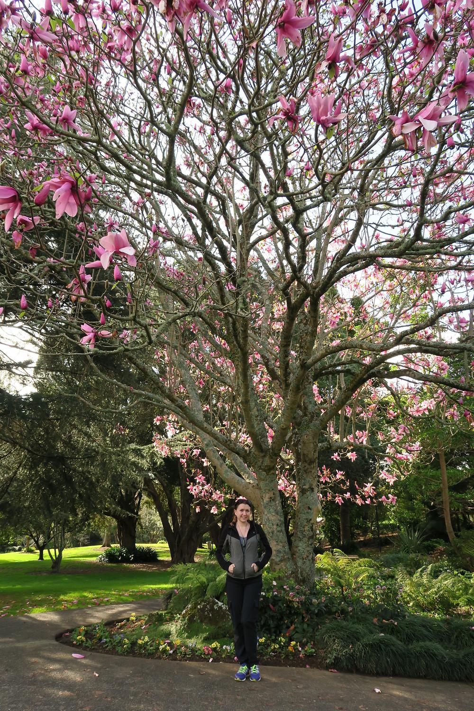 Whangarei Botanical Gardens
