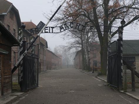 Photo Diary- Auschwitz- Birkenau
