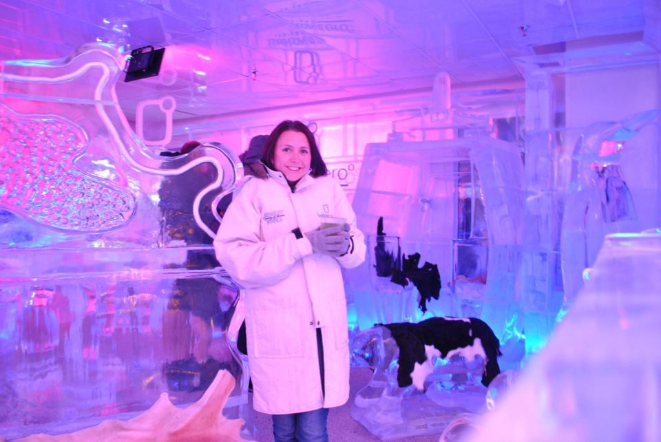 Ice Bar, Queenstown