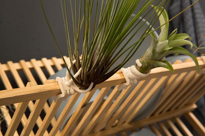 michal-Levitzky-Clip-On-Plant-Stool.jpg