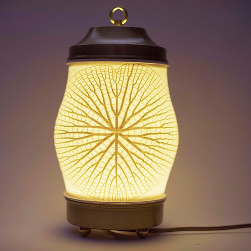 Amazonica Lantern