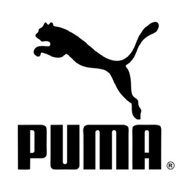 PUma12.png