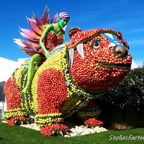 Folie'Flore à Mulhouse, l'art en fruits et légumes
