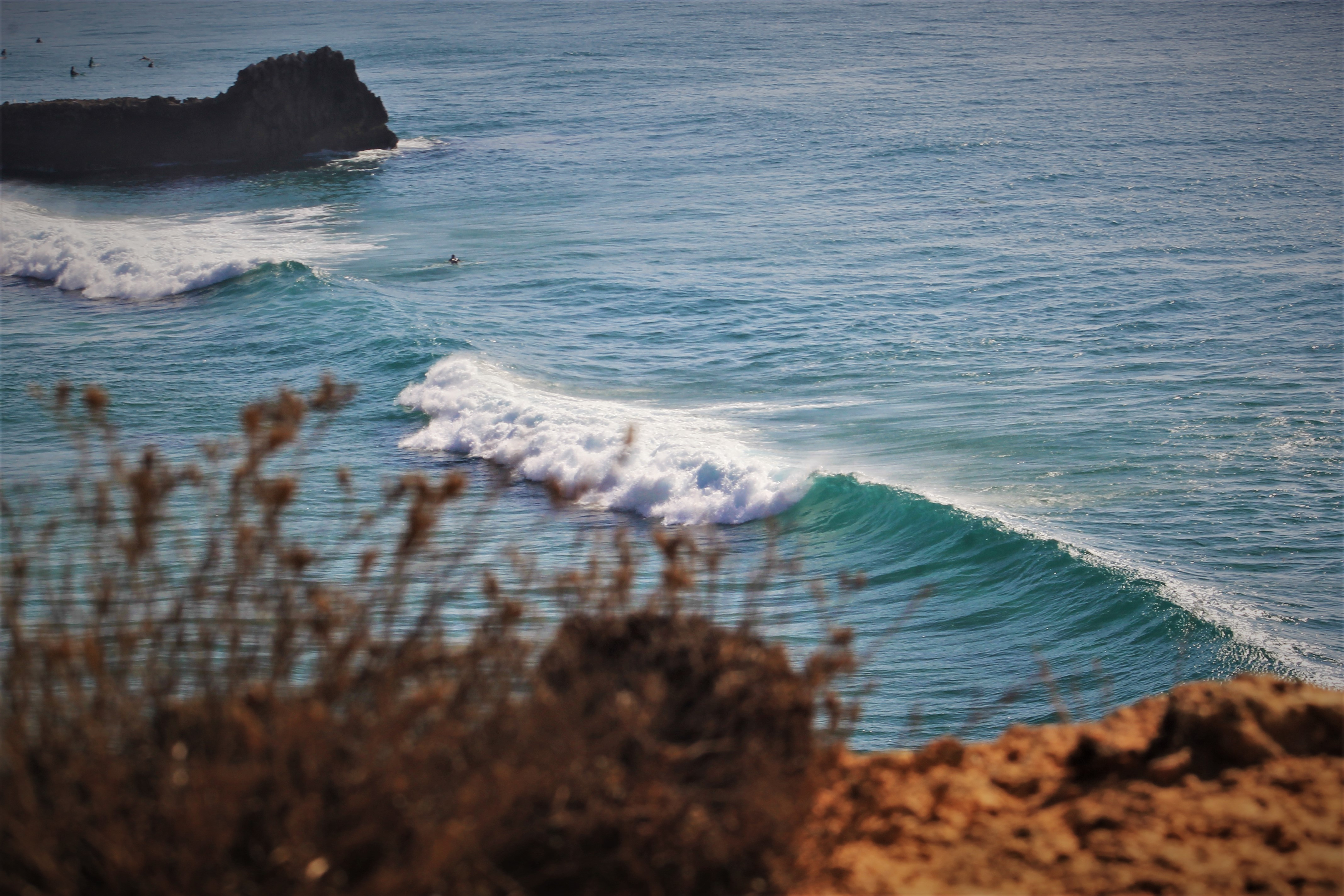 SURF FLOW YOGA SAGRES ALGARVE
