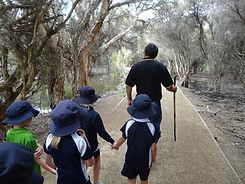 Wetland walk_DSC01042.jpg
