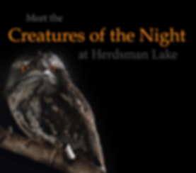 Creatures of the Night v2.png
