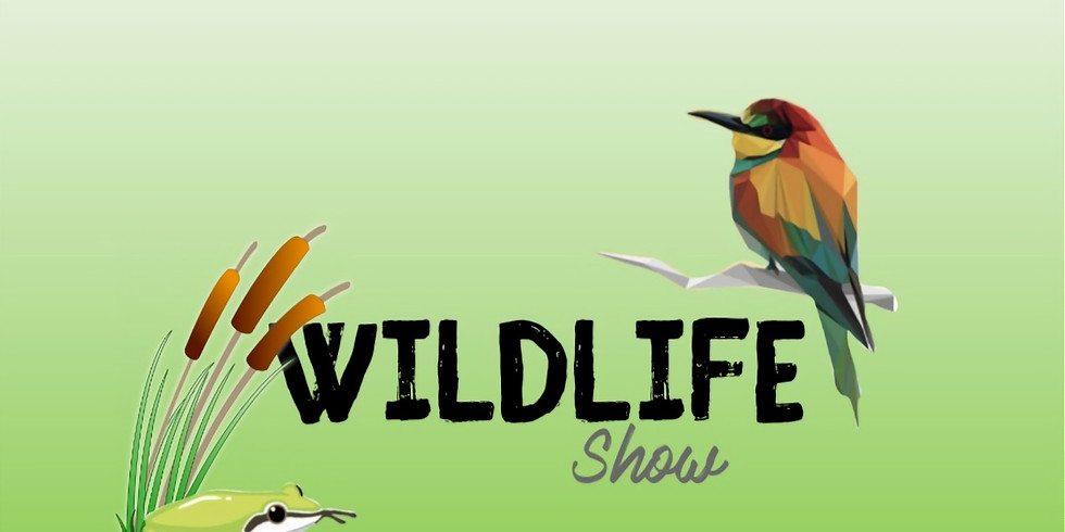The 2021 Wildlife Show - Sunday 7 November