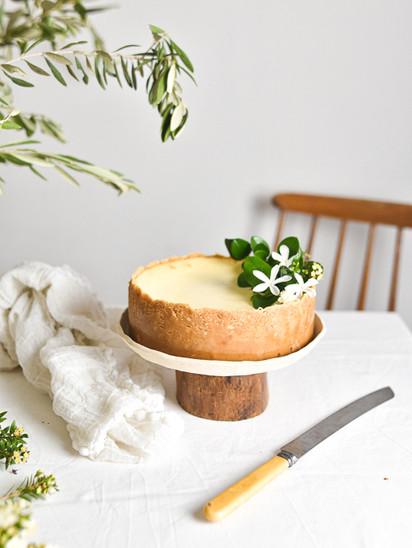 עוגת גבינה ושוקולד לבן מדהימה!