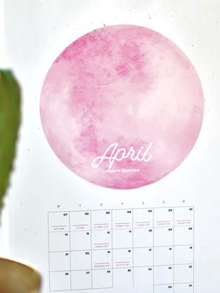 פרינטבל מתנה / אפריל 2018