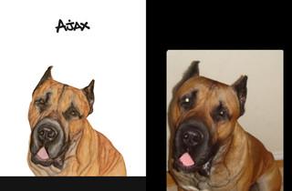 Ajax sbs.jpg