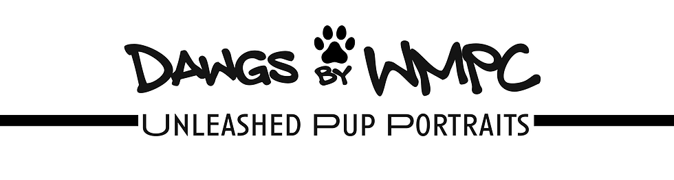 Dawgs Banner.png