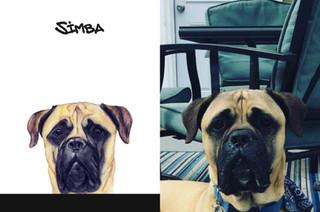 Simba sbs.jpg