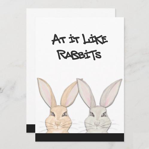 At It Like Rabbits- BLANK back