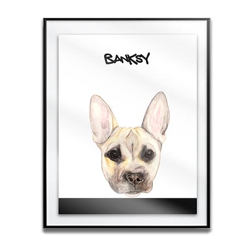 Banksy The Klee Kai/Frenchy Mix