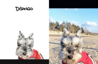 Django sbs.jpg