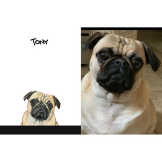 Tony sbs.jpg