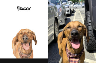 Rocky sbs.jpg