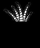 WMP_logo_boxplant.png