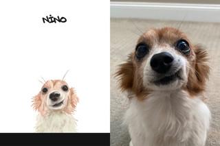 Nino sbs.jpg
