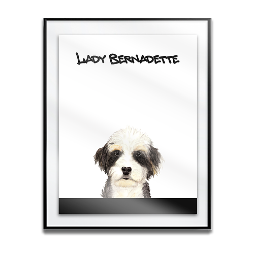Lady Bernadette The Bernedoodle