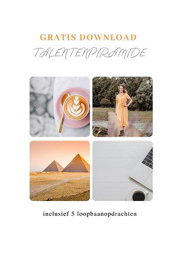Talentenpiramide.jpg