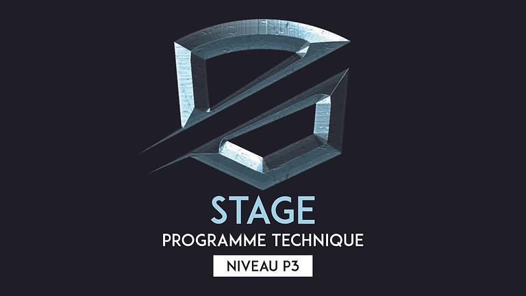 Stage programme technique P3