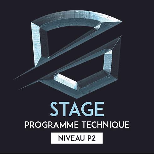 Stage programme technique P2