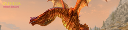 Splendor - Dragon Variants