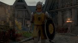 Oblivion Guards