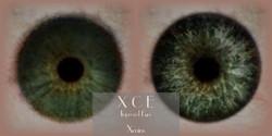 XCE - Improved Eyes