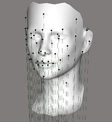 Extended Facial Sculpting.jpg