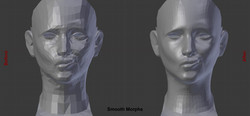 HiPoly Faces