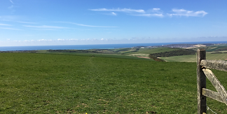 South+Downs+gate+view+of+the+sea.png
