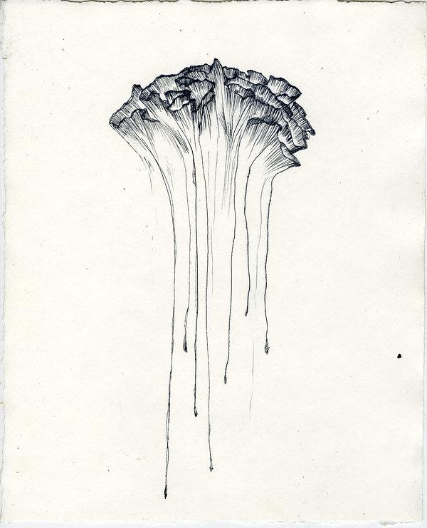 Brain Coral Plexi Print.jpg