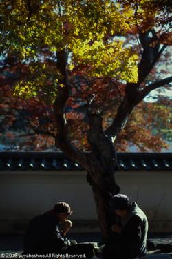静岡県 修善寺